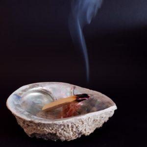 Palo santo arzand in cochilie haliotis