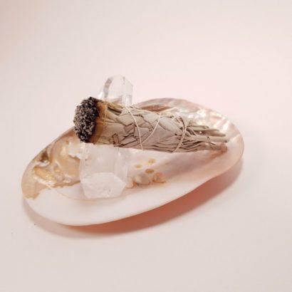 Buchet de Salvia Apiana pe cristale de cuart si scoica perlifera