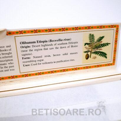 Bețișoarele parfumate Olibanum Etiopia, de la Marcos Polo Treasures, pentru fumigații, sunt realizate din ingrediente naturale.